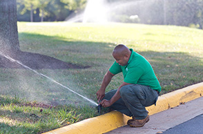 HOA sustainable yard maintenance.
